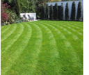 Renovating Old Lawns Or Laying New Turf, Elliott Landscapes in Wimbledon have the experience and skill to make the finished job exceptional