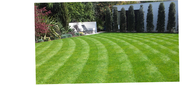 Renovating Old Lawns Or Laying New Turf, Elliott Landscapes Have the Experience and skill to make the finished job exceptional