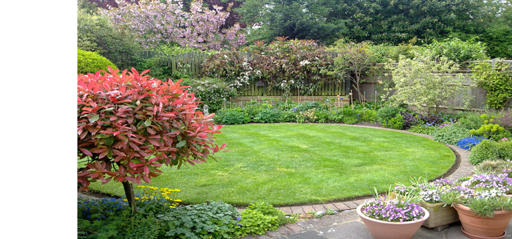 For a one time clear and tidy to an annual contract, garden maintenance by professionals who care at Elliott Landscapes in London
